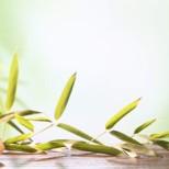 طرق إزالة الشعر من المناطق الحساسة – إيجابيات و سلبيات تعرفي عليها